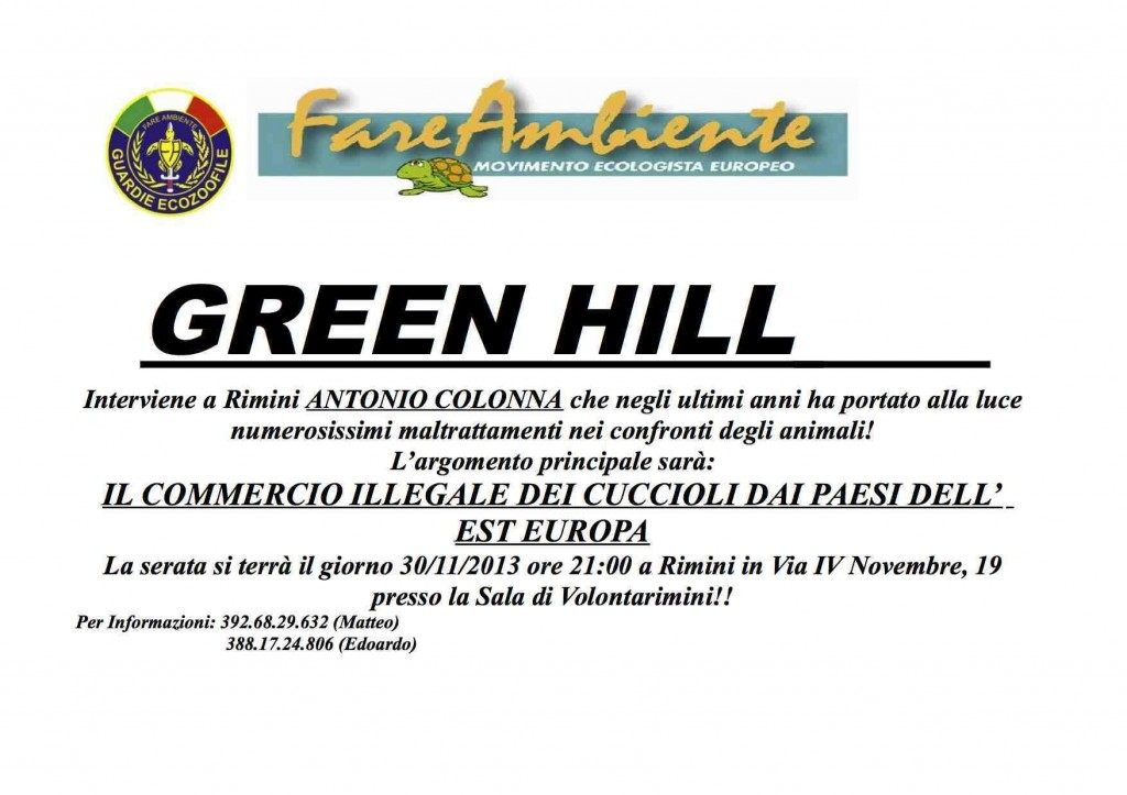Volantino GREEN HILL 1